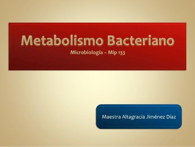 Todas las reacciones bioquímicas en una célula: tanto anabólicas como catabólicas. Metabolismo