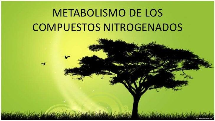 METABOLISMO DE LOSCOMPUESTOS NITROGENADOS