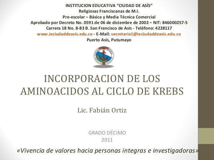 """INCORPORACION DE LOS AMINOACIDOS AL CICLO DE KREBS Lic. Fabián Ortiz GRADO DÉCIMO 2011 INSTITUCION EDUCATIVA """"CIUDAD DE AS..."""