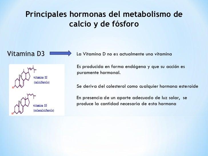 o colesterol participa da sintese dos hormonios esteroides