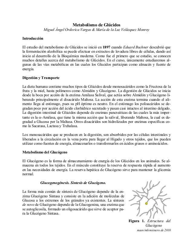 maov/mlvm/enero de 2010Metabolismo de GlúcidosMiguel Ángel Ordorica Vargas & María de la Luz Velázquez MonroyIntroducciónE...