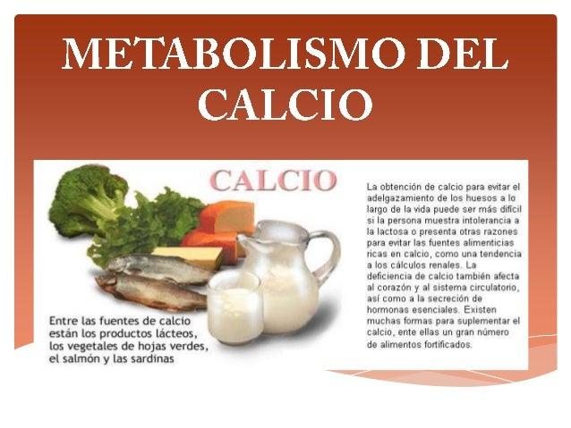 EL CALCIO Es un metal alcalinotérreo que cumple una importante función estructural en nuestro organismo al ser parte integ...