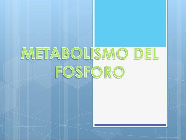 Uno de los elementos minerales mas abundantes del cuerpo.  Forma parte de todas las membranas celulares sobre todo en los ...