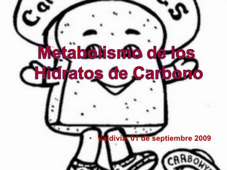 <ul><li>Valdivia, 01 de septiembre 2009 </li></ul>