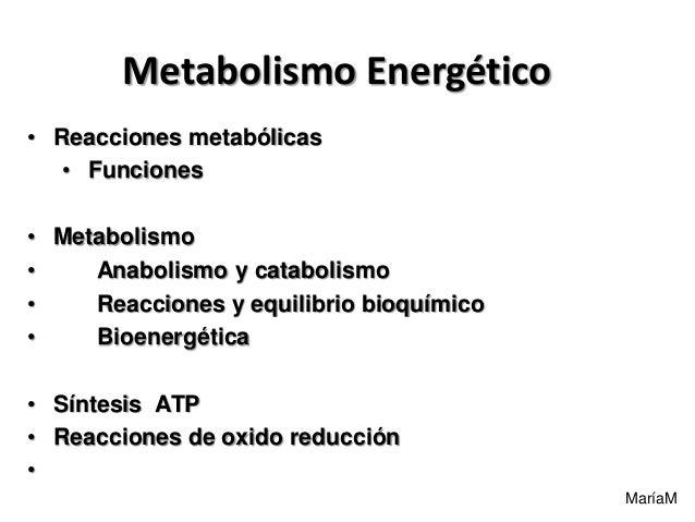 MaríaM Metabolismo Energético • Reacciones metabólicas • Funciones • Metabolismo • Anabolismo y catabolismo • Reacciones y...