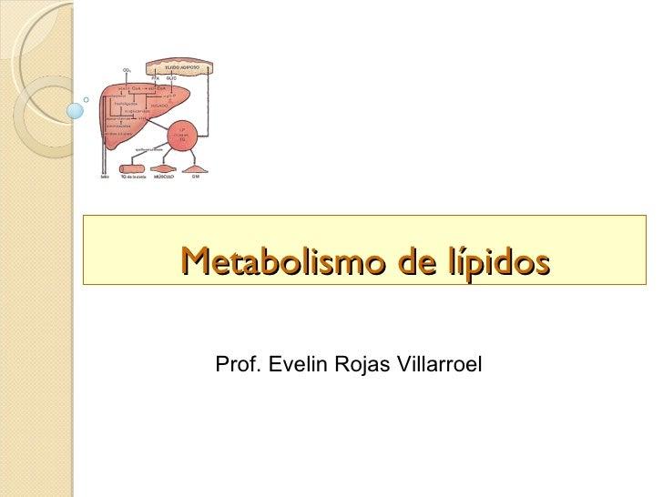 Metabolismo de lípidos  Prof. Evelin Rojas Villarroel