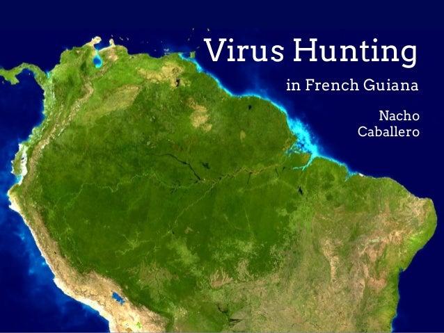 Virus Hunting in French Guiana