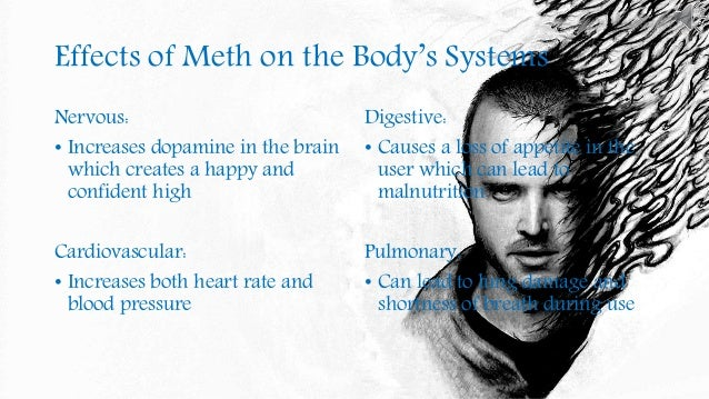 essay on methamphetamine