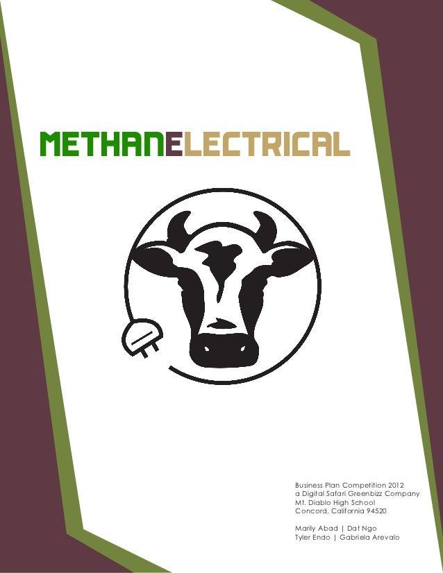 METHANELECTRICAL             Business Plan Competition 2012             a Digital Safari Greenbizz Company             Mt....