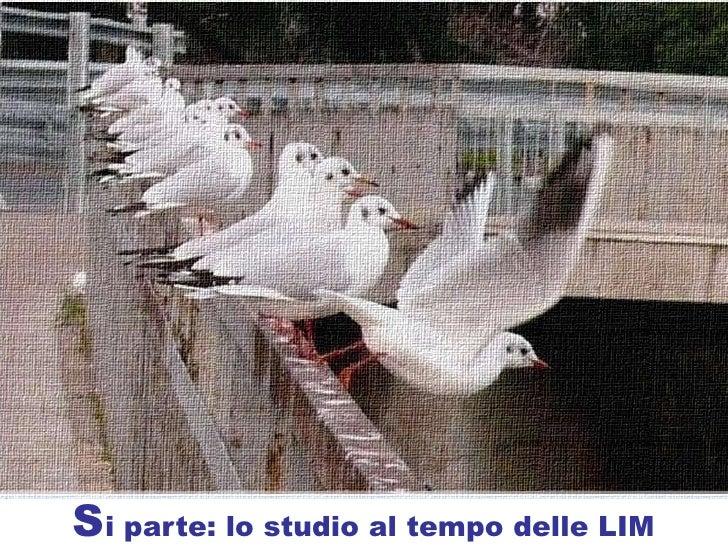 Metodo Studio