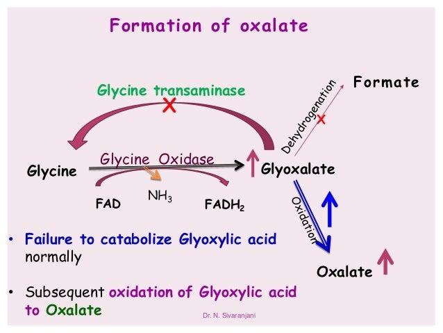 Met Of Glycine