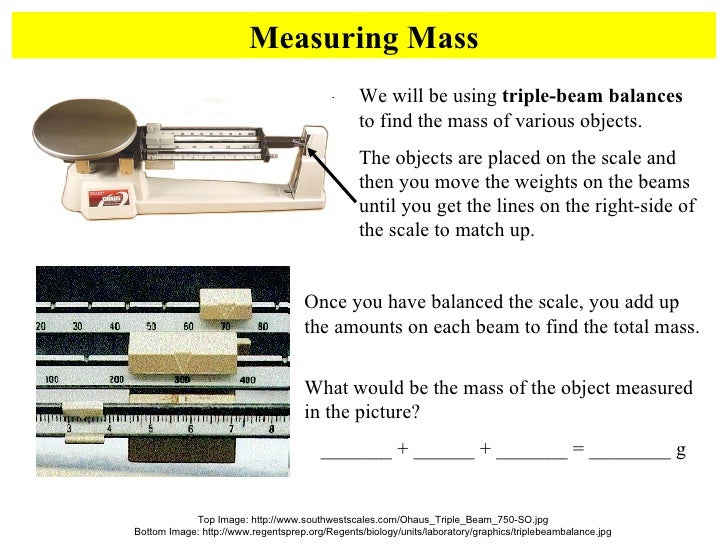 metric mania worksheet Termolak – Metric Mania Worksheet