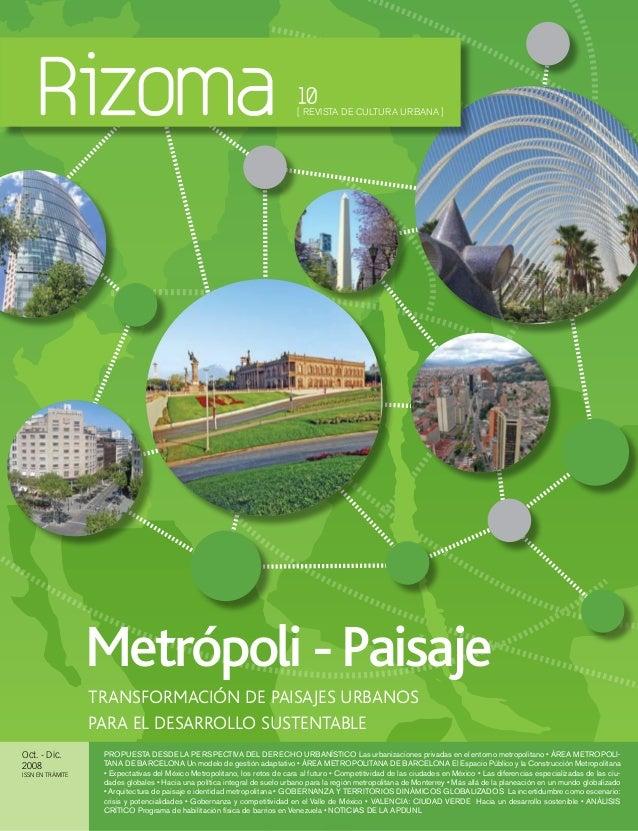 Metropoli y paisaje   rizoma