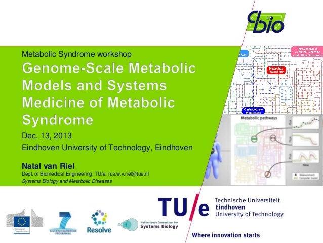 Metabolic Syndrome workshop  Dec. 13, 2013 Eindhoven University of Technology, Eindhoven Natal van Riel Dept. of Biomedica...