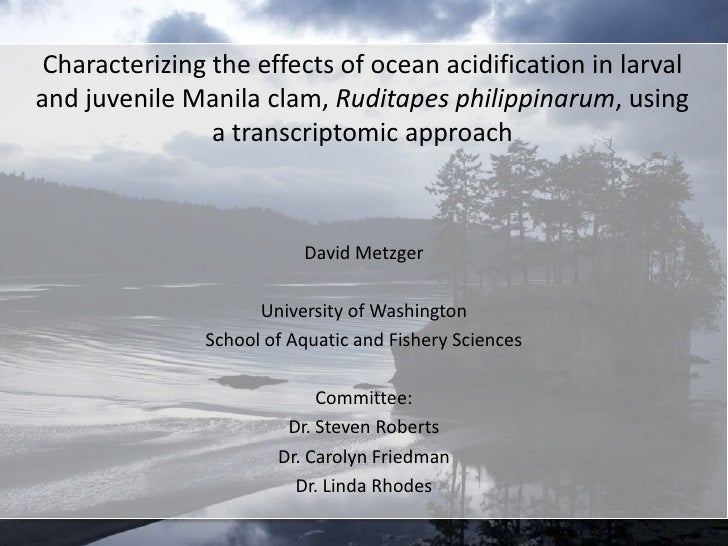 Characterizing the effects of ocean acidification in larvaland juvenile Manila clam, Ruditapes philippinarum, using       ...