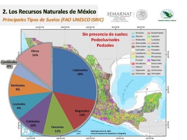 Estado prioridades y necesidades para el manejo for Suelos y tipos de suelos