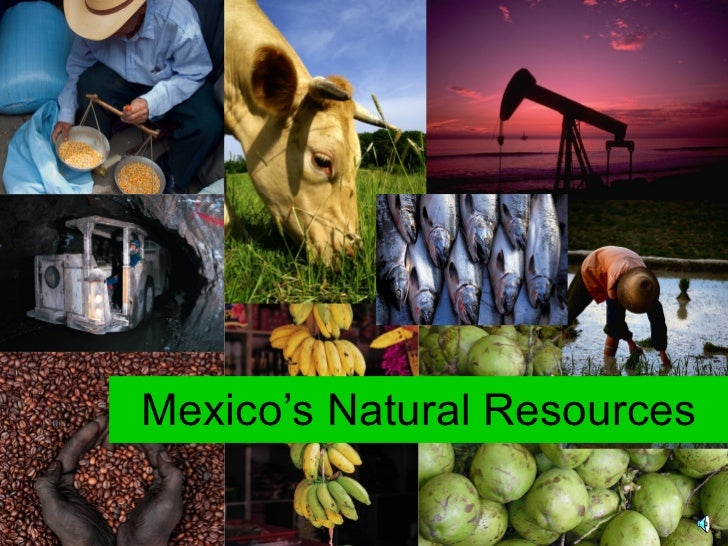 What Is Mexico S Natural Resources