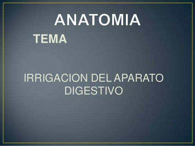 TEMA IRRIGACION DEL APARATO DIGESTIVO