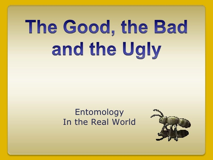 The Good, the Badand the Ugly<br />Entomology<br />In the Real World<br />