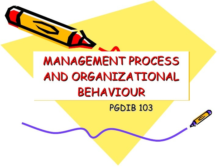MANAGEMENT PROCESS AND ORGANIZATIONAL BEHAVIOUR PGDIB 103