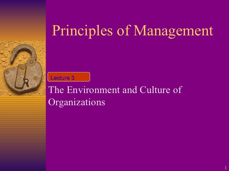 Principles of Management The Environment and Culture of Organizations  Lecture 3