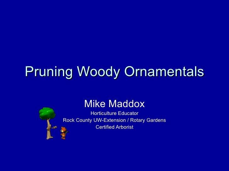 Mgv Tree Pruning