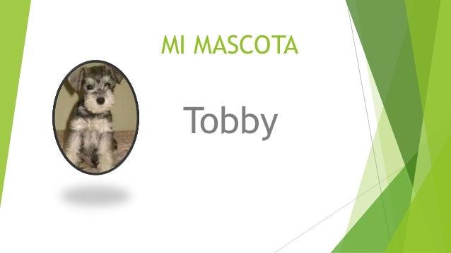 MI MASCOTA Tobby