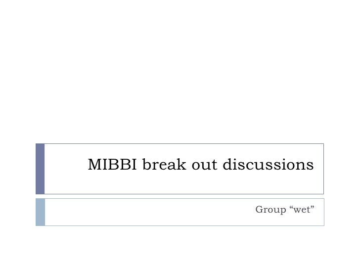 Mibbi break out discussions - wet group