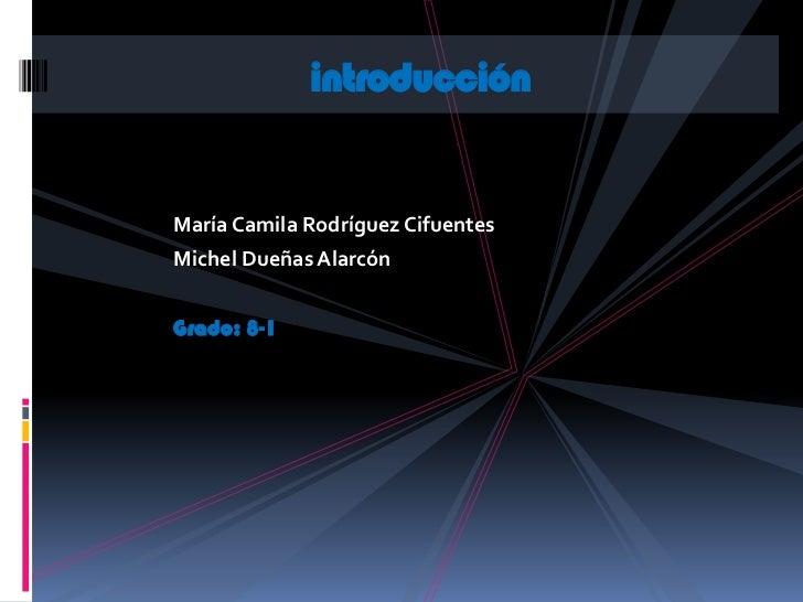 introducciónMaría Camila Rodríguez CifuentesMichel Dueñas AlarcónGrado: 8-1