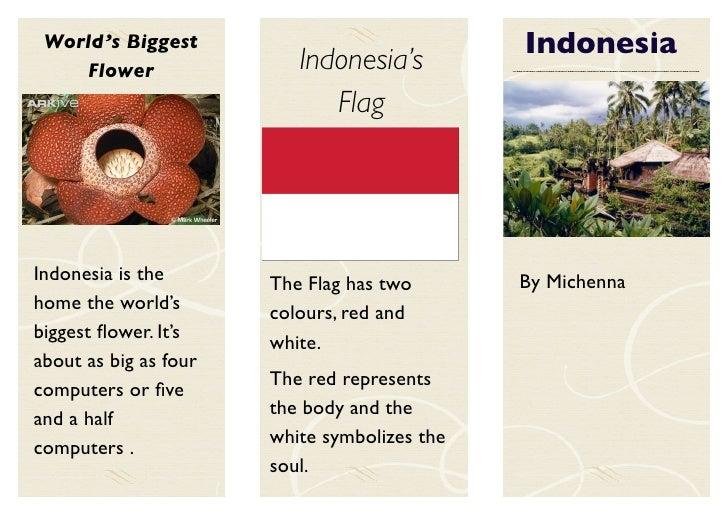 World's Biggest                              Indonesia     Flower                Indonesia's                              ...