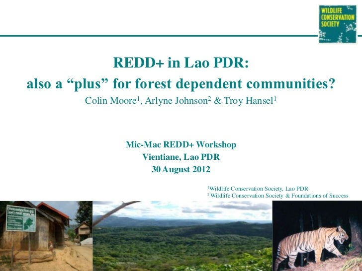 "REDD+ in Lao PDR:also a ""plus"" for forest dependent communities?        Colin Moore1, Arlyne Johnson2 & Troy Hansel1      ..."