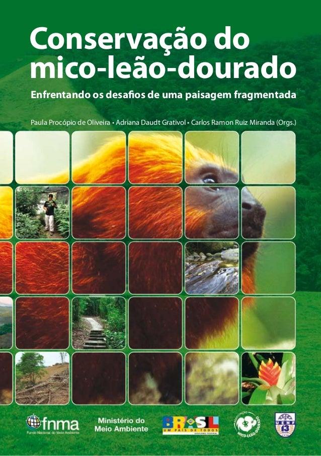 Conservação do  mico-leão-dourado  Enfrentando os desafios de uma paisagem fragmentada  Paula Procópio de Oliveira • Adria...