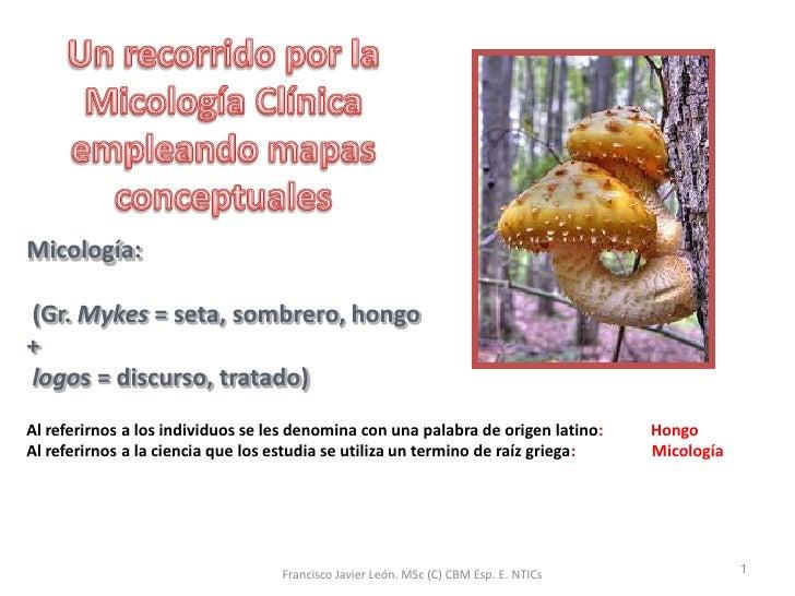 Micologia Y Mapas Conceptuales