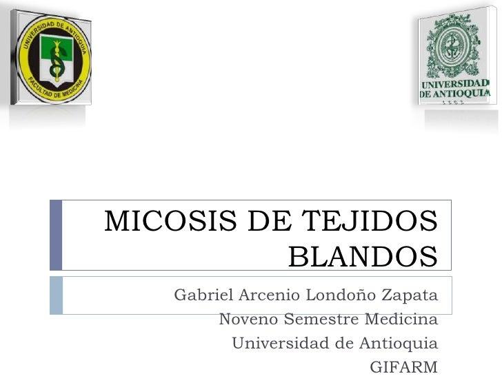 MICOSIS DE TEJIDOS BLANDOS<br />Gabriel Arcenio Londoño Zapata<br />Noveno Semestre Medicina<br />Universidad de Antioquia...
