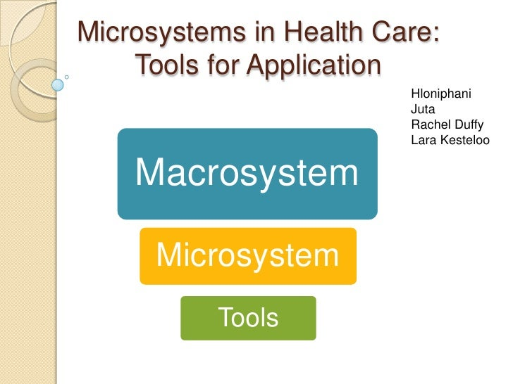 Microsystems in Health Care:    Tools for Application                         Hloniphani                         Juta     ...