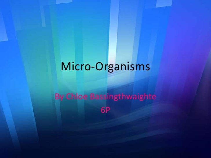 Micro-Organisms<br />By Chloe Bassingthwaighte <br />6P<br />