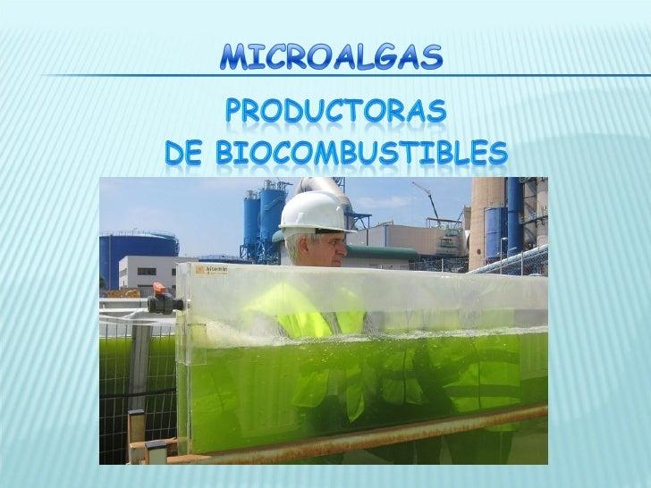 Microal                       gas                      Características                                                    ...