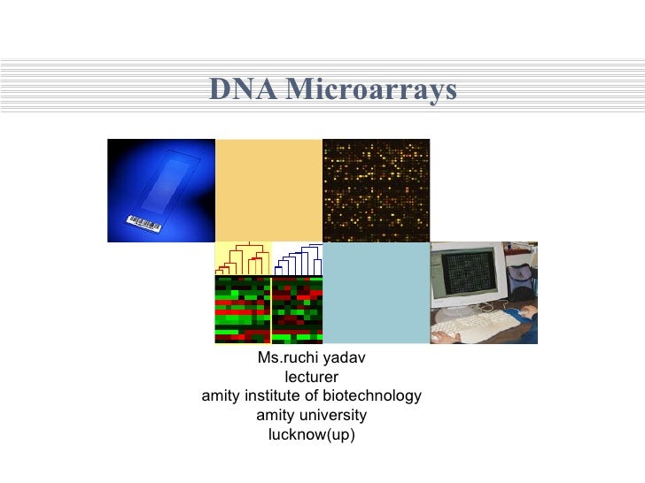 DNA Microarrays Ms.ruchi yadav lecturer amity institute of biotechnology amity university lucknow(up)