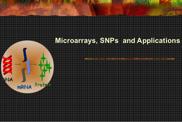 Microarrays, SNPs and ApplicationsDNA      mRNA Protein