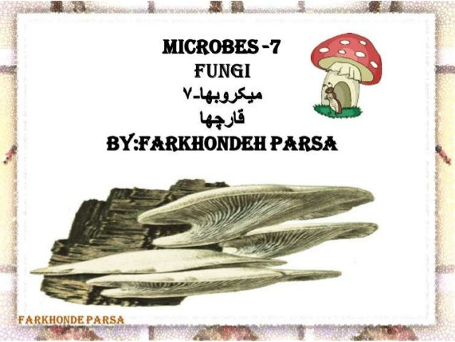 Microbes 7