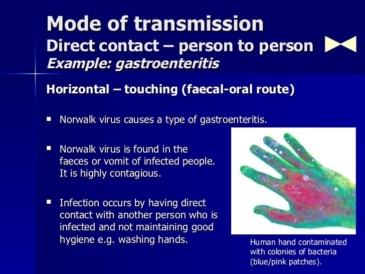 Gastroenteritis Mode Of Transmission