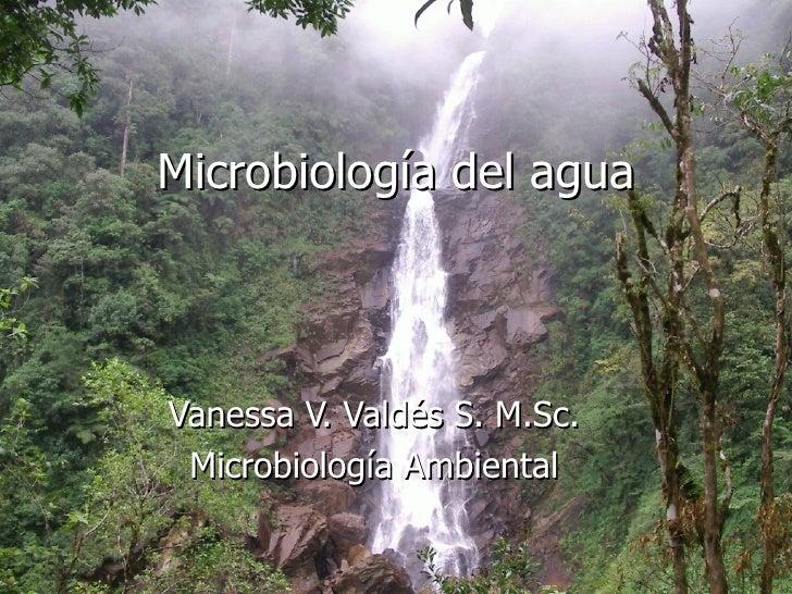 Microbiología del agua Vanessa V. Valdés S. M.Sc. Microbiología Ambiental