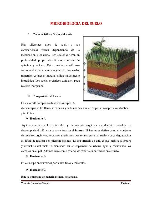 Yesenia Camacho Gámez Página 1 MICROBIOLOGIA DEL SUELO 1. Características físicas del suelo Hay diferentes tipos de suelo ...