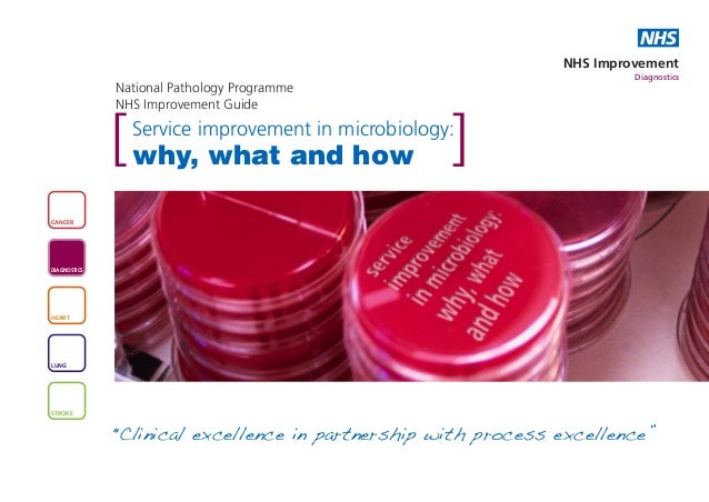 Service improvement in microbiology: why, what and how