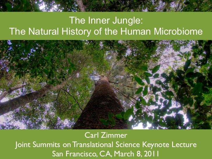 The Human Jungle: Exploring the Microbiome
