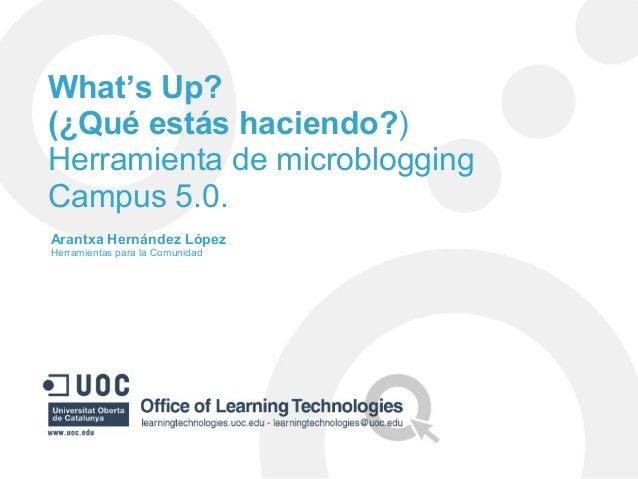 What's Up? (¿Qué estás haciendo?) Herramienta de microblogging Campus 5.0. Arantxa Hernández López Herramientas para la Co...