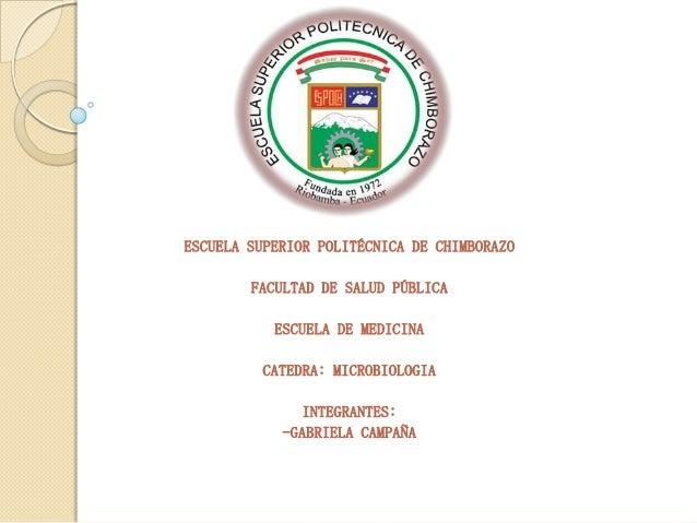 ESCUELA SUPERIOR POLITÉCNICA DE CHIMBORAZO FACULTAD DE SALUD PÚBLICA ESCUELA DE MEDICINA CATEDRA: MICROBIOLOGIA  INTEGRANT...
