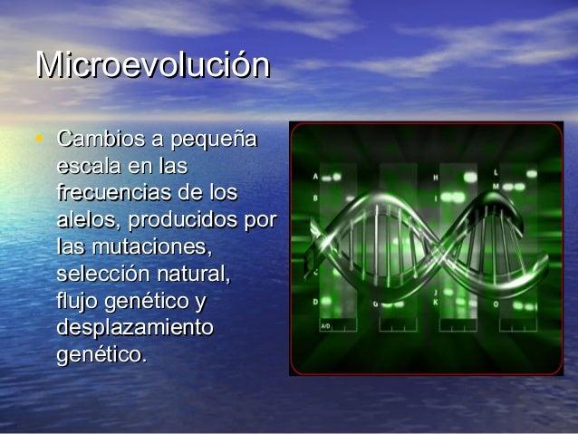 MicroevoluciónMicroevolución • Cambios a pequeñaCambios a pequeña escala en lasescala en las frecuencias de losfrecuencias...