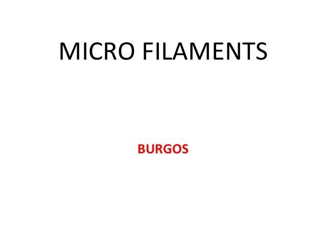 Micro filaments