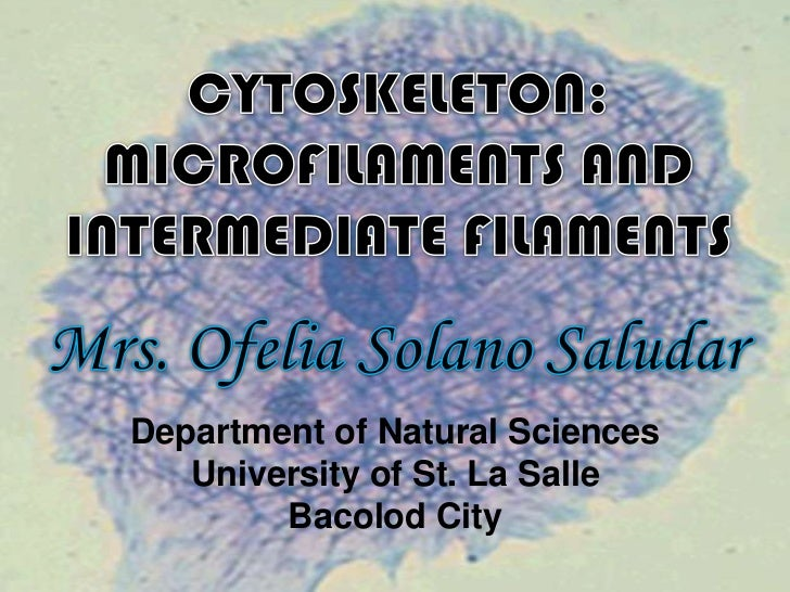 Department of Natural Sciences   University of St. La Salle        Bacolod City